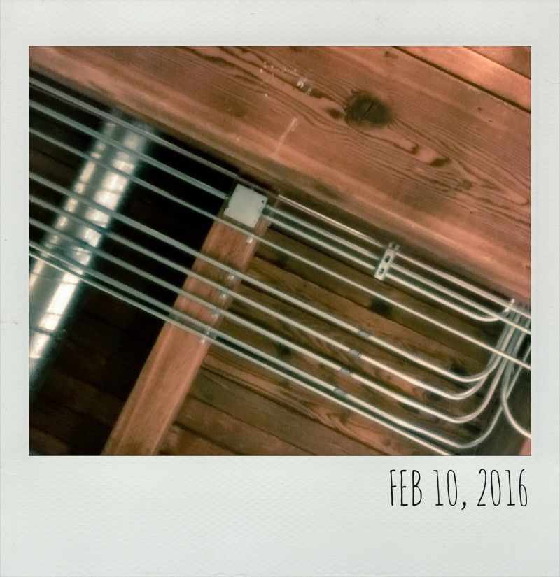 Polaroid Feb 10