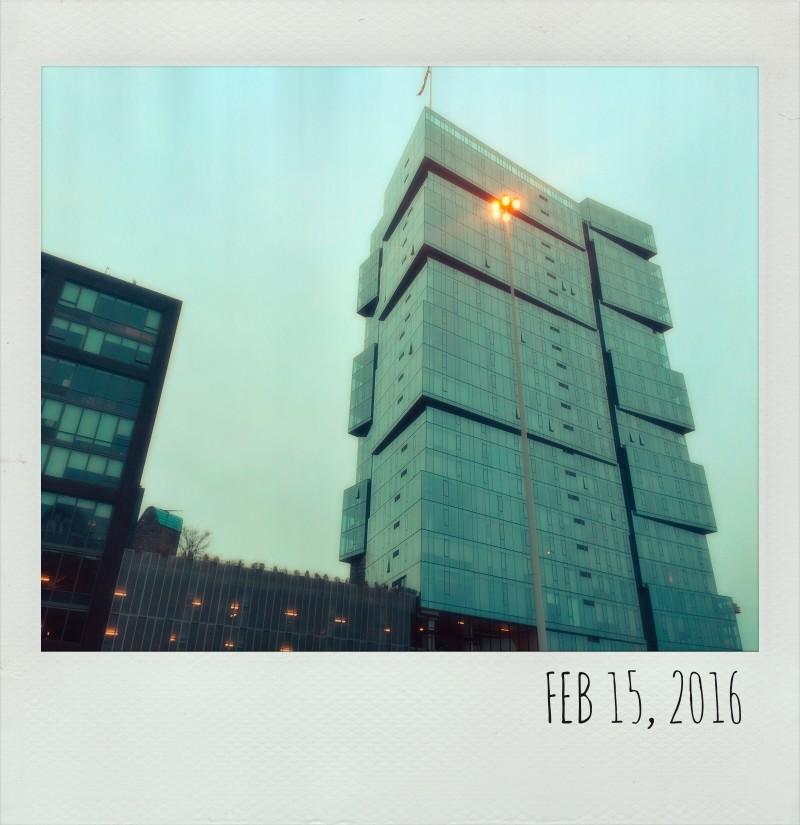 Polaroid Feb 15