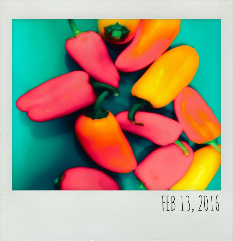 Polaroid Feb 13