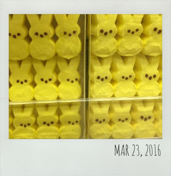 Polaroid March 23